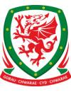 欧洲杯威尔士国家队阵容-欧洲杯威尔士队球员名单