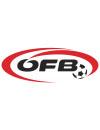 欧洲杯奥地利国家队阵容-欧洲杯奥地利队球员名单